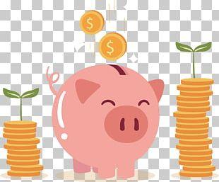 Piggy Bank Coin PNG
