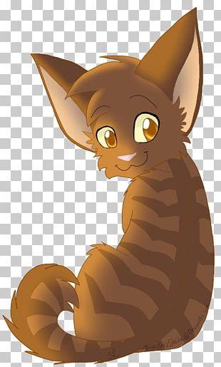 Kitten Whiskers Cat Brackenfur Warriors PNG