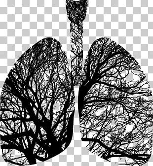 Tree Silhouette Lung Breathing PNG