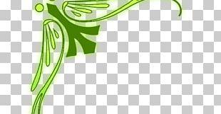 Plant Stem Frames PNG
