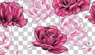 Rose Flower Pattern PNG