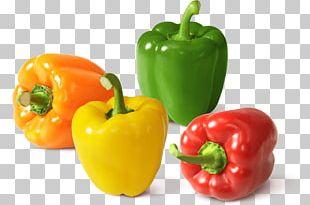 Habanero Chili Pepper Cayenne Pepper Capsicum Bell Pepper PNG
