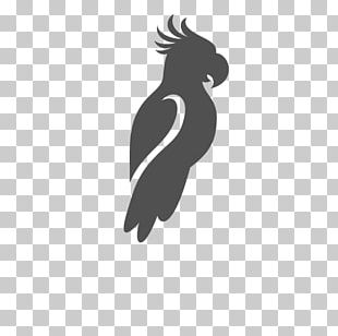 Beak Flightless Bird Logo Silhouette PNG