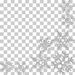Wells Branch Community Library Central Library Snowflake PNG
