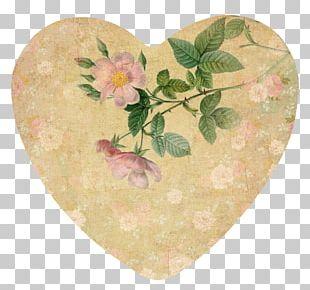 Art Valentine's Day Botanical Illustration Still Life Paper PNG