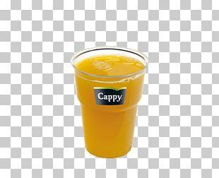 Orange Juice Orange Drink Fuzzy Navel Harvey Wallbanger Orange Soft Drink PNG