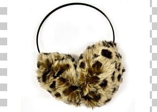 Cat Fur Mammal Ear Snout PNG