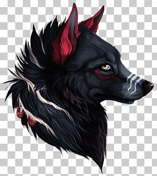 Dog Black Wolf Sokka Drawing Red Wolf PNG