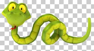 Snake Stock Photography PNG
