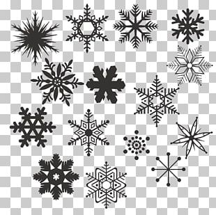 Black And White Snowflake PNG