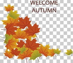 Autumn Poster PNG