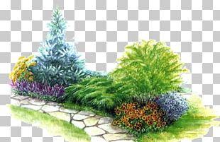 Landscape Design Bedding Garden Landscaping PNG