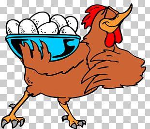 Rooster Chicken Coop Egg Hen PNG