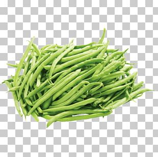 Green Bean Vegetable Pea PNG