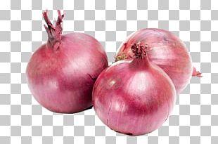 Potato Onion Vegetable Indian Cuisine Fruit Yellow Onion PNG
