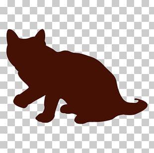 Whiskers Kitten Black Cat Wildcat PNG