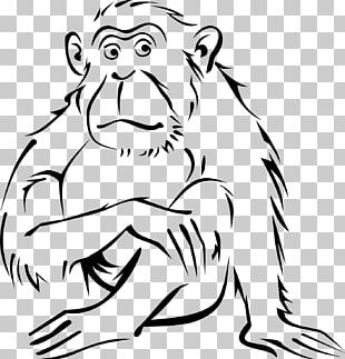 Monkey Coloring Book Drawing Black-and-white Colobus PNG