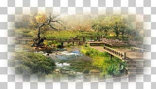 Ninna-ji Natural Landscape Japanese Garden PNG