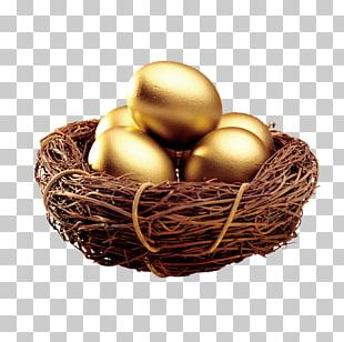 Edible Birds Nest Egg Bird Nest Icon PNG