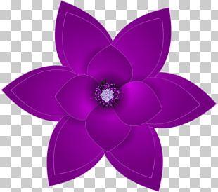 Purple Flower PNG