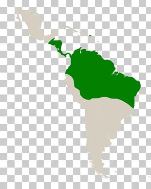 Latin America South America Subregion Spanish Colonization Of The Americas PNG