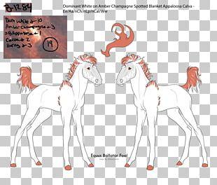 Giraffe Deer Horse /m/02csf Mammal PNG