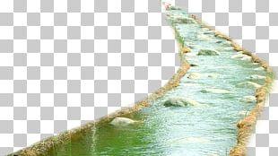 Euclidean Icon PNG