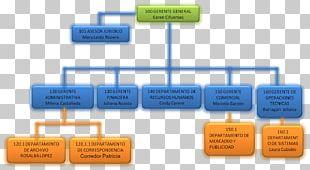 Brand Organization Diagram PNG