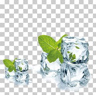 Juice Mentha Spicata Ice Cube Menthol PNG