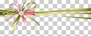 Ribbon Gift Computer File PNG