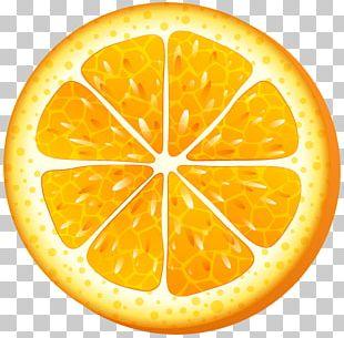 Juice Orange Slice PNG