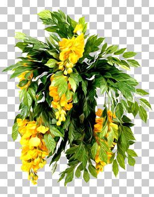 Cut Flowers Flower Bouquet Floristry PNG