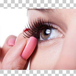 Eyelash Extensions Eyelash Curlers Cosmetics Mascara PNG