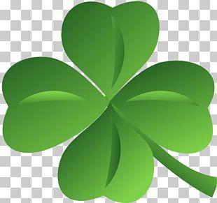 Ireland White Clover Saint Patrick's Day Shamrock PNG