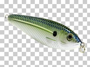Sardine Spoon Lure Oily Fish AC Power Plugs And Sockets PNG