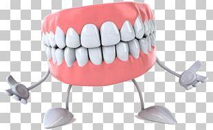 Gums Tooth Dentistry Dentures Cartoon PNG