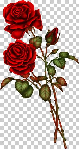 Artificial Flower Rose Floral Design PNG