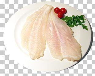 Fish Slice Iridescent Shark Sashimi Wine PNG