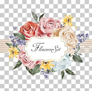Flower Cartoon Beach Rose Illustration PNG