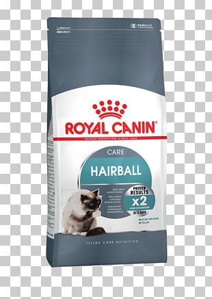 Cat Food Felidae Dog Royal Canin Indoor Intense Hairball 34 Cat Dry Food PNG