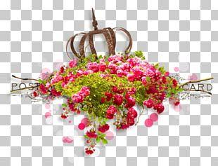 Floral Design Portable Network Graphics Rose Flower PNG