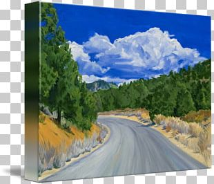 Mount Scenery Sequoia National Park Painting Sequoia National Forest Gallery Wrap PNG