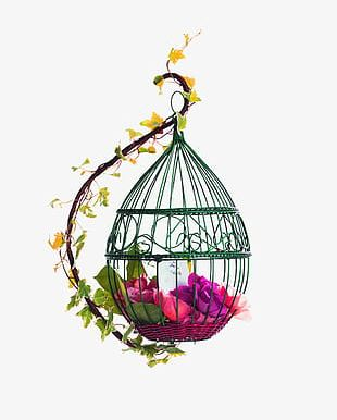 Red Fresh Bird Cage Flowers Decorative Patterns PNG