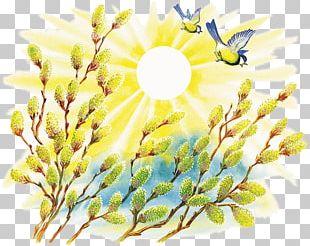 Spring Fairy Tale Jarilo Folklore Legend PNG
