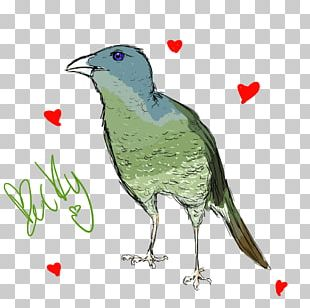 Beak Bird Digital Art Artist PNG