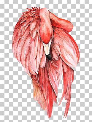Flamingo Bird Watercolor Painting Drawing PNG