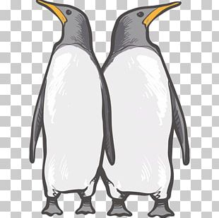 King Penguin Reindeer Earless Seal Animal PNG