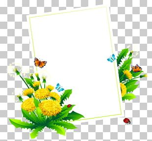 Album Design Graphics PNG