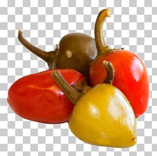 Habanero Bell Pepper Serrano Pepper Cayenne Pepper Vegetarian Cuisine PNG