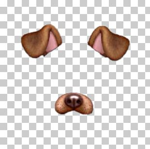 Puppy Snapchat Photographic Filter PNG